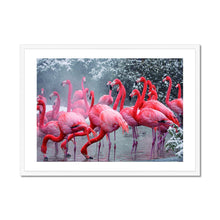 Load image into Gallery viewer, American Flamingos - Framed Poster