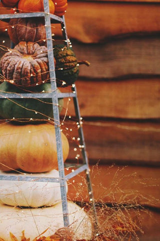 fairy lights ideas for fall