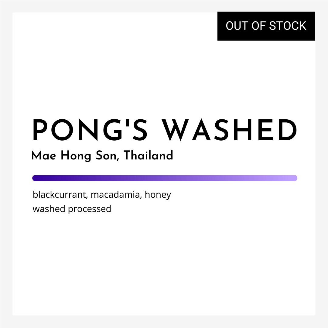 Pong's Washed