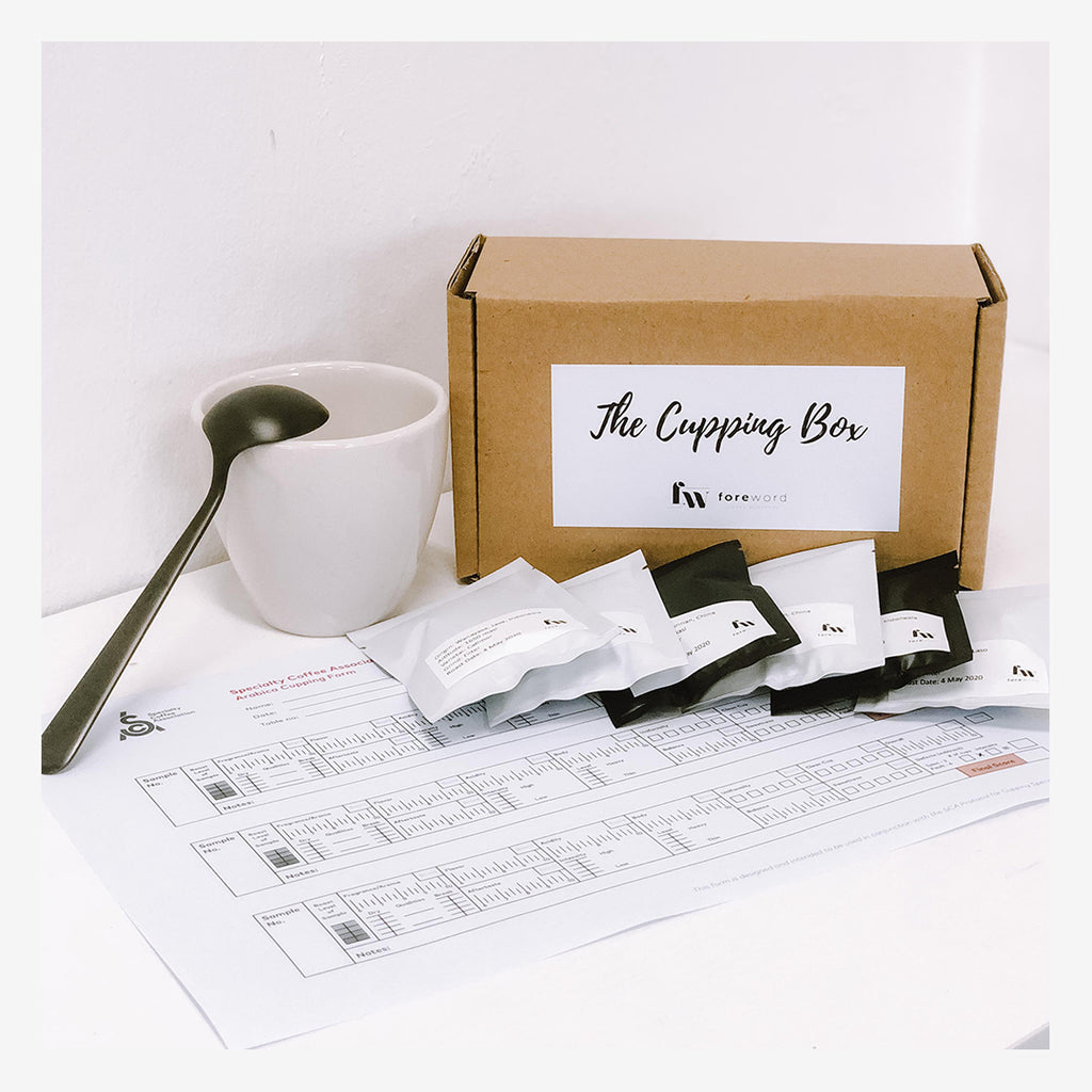 The Cupping Box Self-Guided Experience