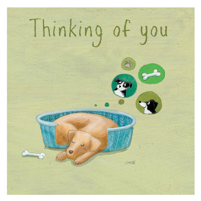 Dog - Thinking of You