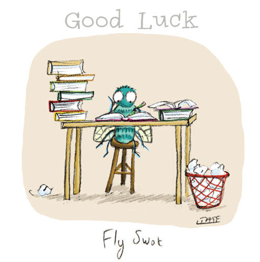 Fly Swot - Good Luck