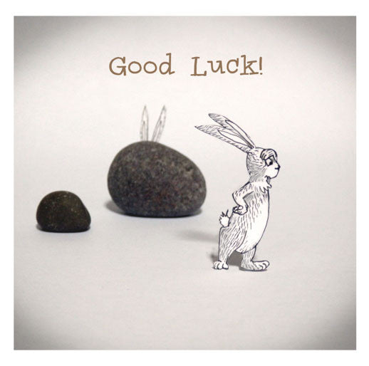 Rabbit and Stones -Good Luck