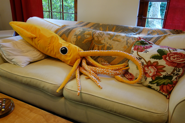 Susy the Squid