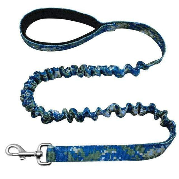 petsupersupply Blue / M Nylon Dog Walking Leash pet love dog cat supplies fast delivery