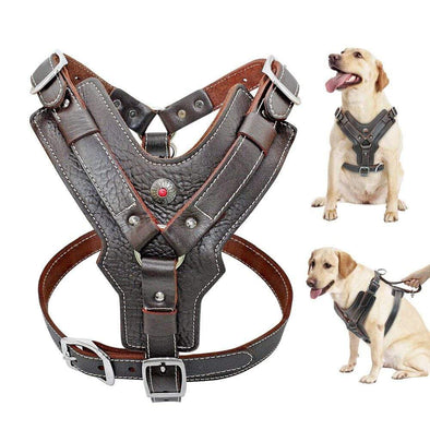 petsupersupply Genuine Leather Dog Harness pet love dog cat supplies fast delivery