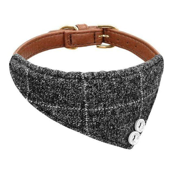 petsupersupply Gray / L Adjustable Leather Puppy Collar pet love dog cat supplies fast delivery