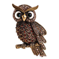 Beautiful jewellery with an inspired owl design in gold-tone on a white background.
