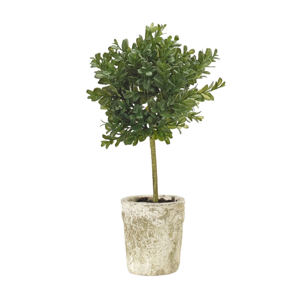 Load image into Gallery viewer, Boxwood Topiary