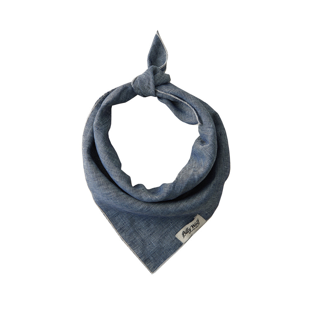 Load image into Gallery viewer, Chambray Dog Bandana