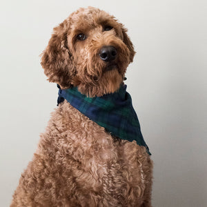 Load image into Gallery viewer, Tartan Dog Bandana