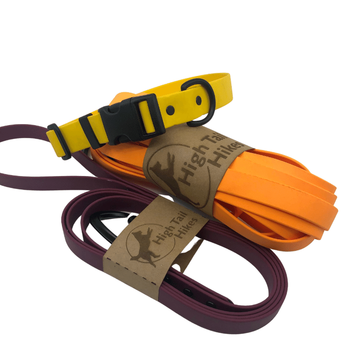 Shop Leashes - Small Dogs (3/8