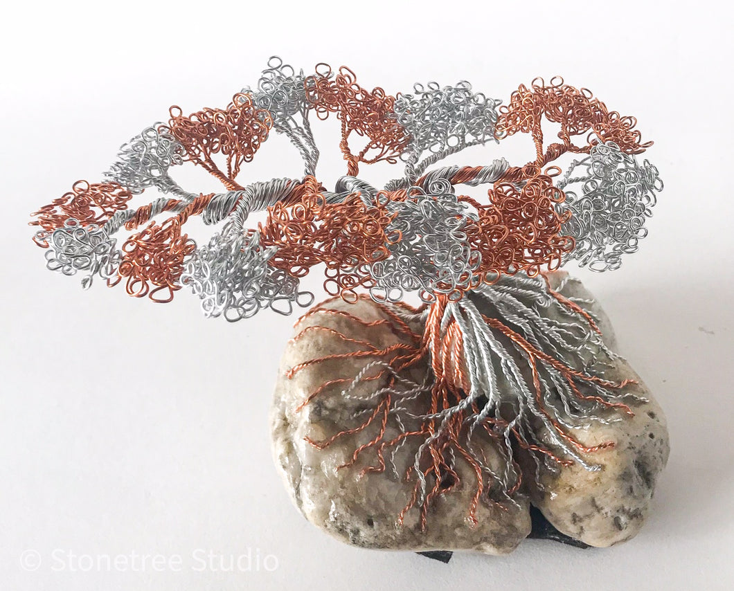 Monterey Pine wire sculpture