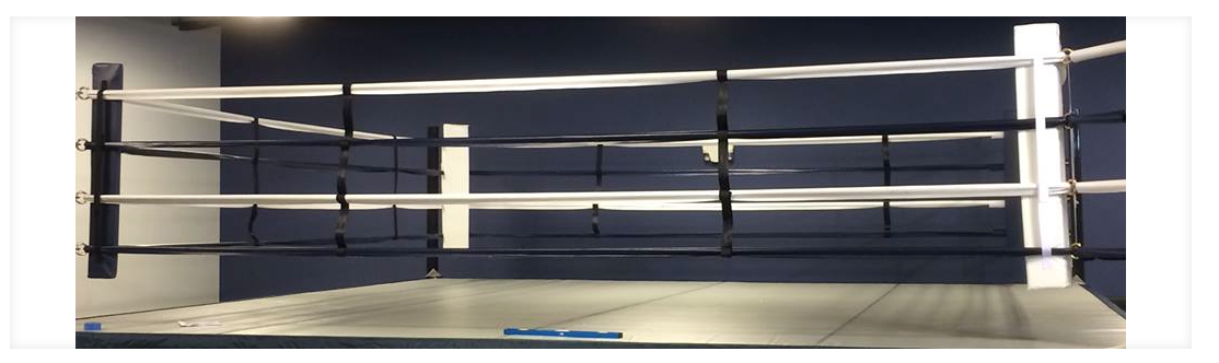 Rival Competition Boxing Ring