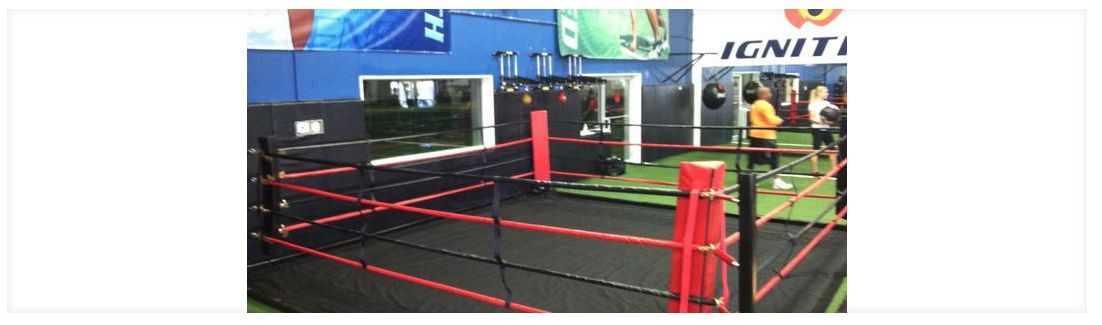 Free Standing Floor Ring Rival Boxing Gear Usa