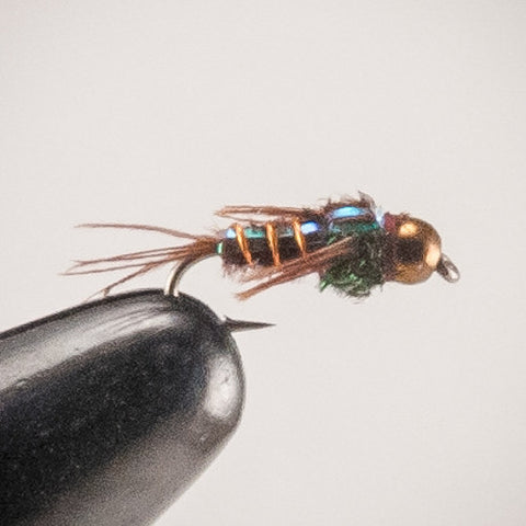 Flashback Pheasant Tail #10-20