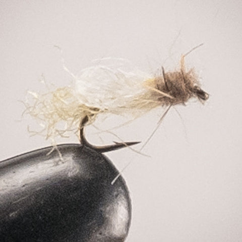 Iris Micro Caddis Yellow #20