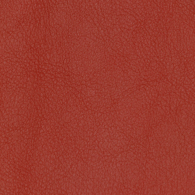 Porsche Classic Vegetable Tanned Red 1079