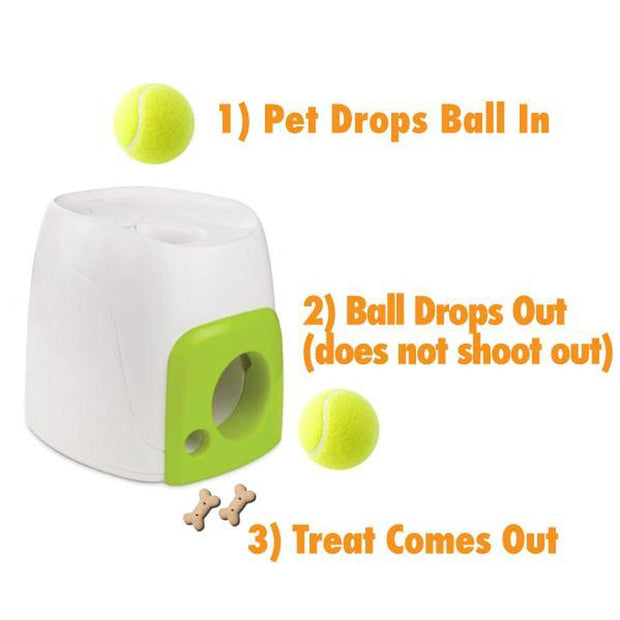 Fetch N Treat Interactive Toys Pet Play All For Paws