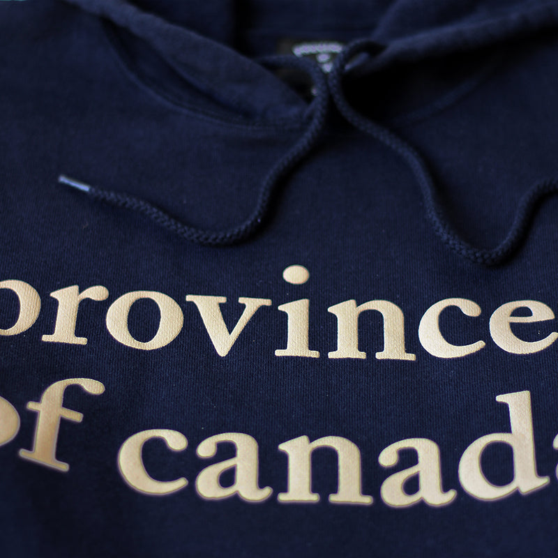 Province of Canada - Lowercase Hoodie Mens Navy and Camel