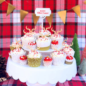 Reindeer Cake + Cupcakes for Christmas