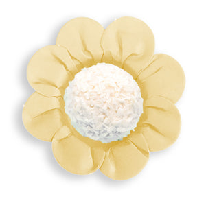 Daisy Flower Candy Cups: Cream | www.bakerspartyshop.com