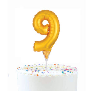 Inflatable Balloon Cake Topper: Number 9 | www.bakerspartyshop.com