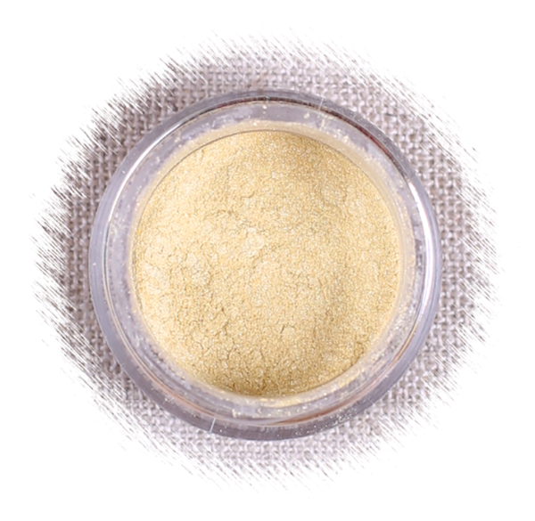Shiny Gold Luster Dust | www.bakerspartyshop.com