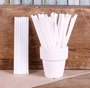 White Lollipop Sticks: 4.5"