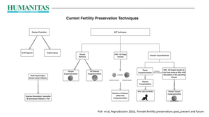Fertility Preservation: Present and Possible Futures