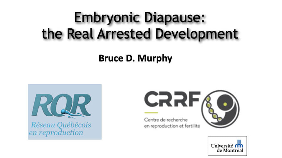 Embryonic Diapause: the Real Arrested Development.