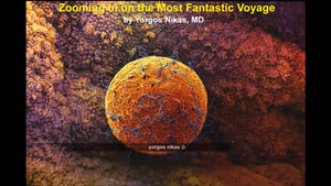 Zooming in on the most Fantastic Voyage