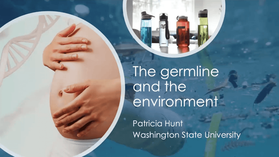 The Germline and the Environment