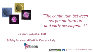 The Continuum Between Oocyte Maturation and Early Development