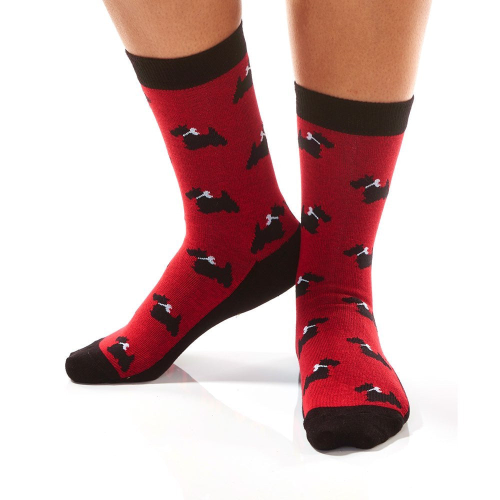 Terrier Crew Socks