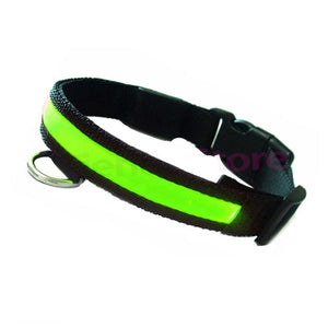 Collar led de nailon para la noche - Animal Camp - Gasto de envió gratis