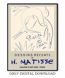 Henri Matisse Bird Drawing