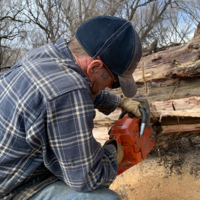 Man cutting tree with chainsaw while wearing Tactical Hearing
