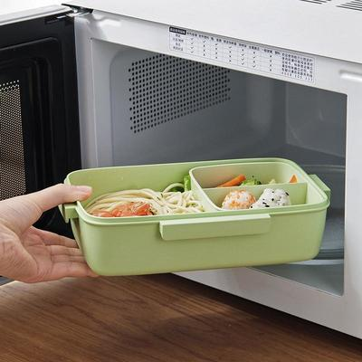 Japanese Bento Lunch Box for microwave