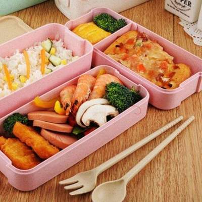 Ecological Bento Box for good meal