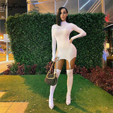 Solid Long Sleeved Mini Dress