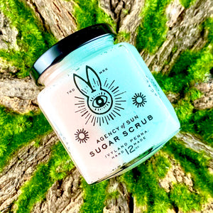 Back to Dream Castle Sugar Scrub