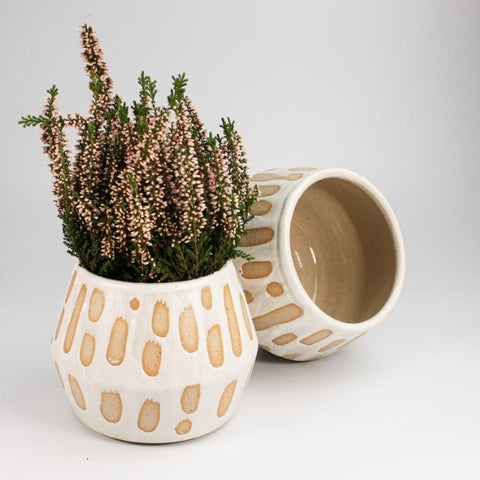 white spotted plant pot