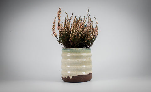 Ribbed plant pot with thick glaze on terracotta clay, with Heather plant inside