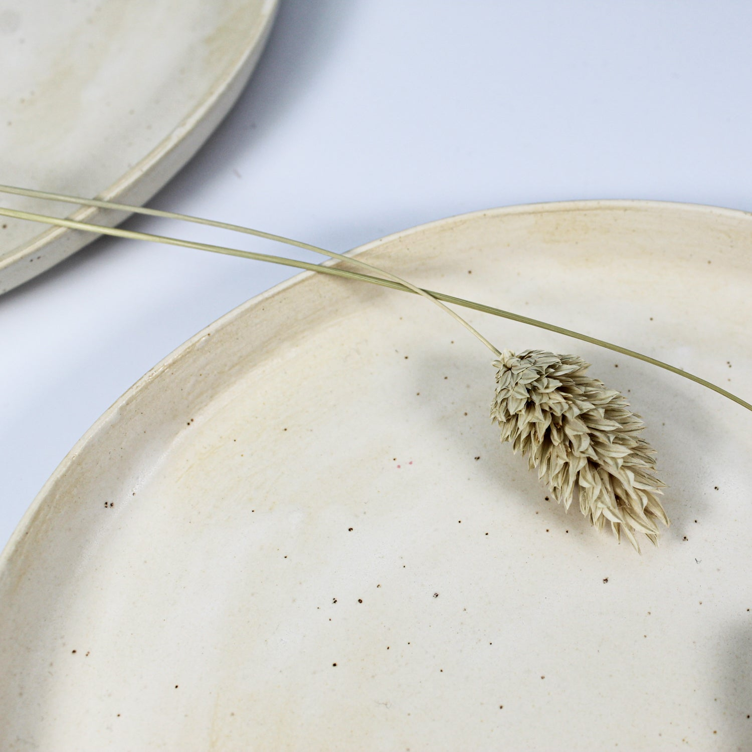 Close up of cream speckled ceramic side plate with dried grass on it
