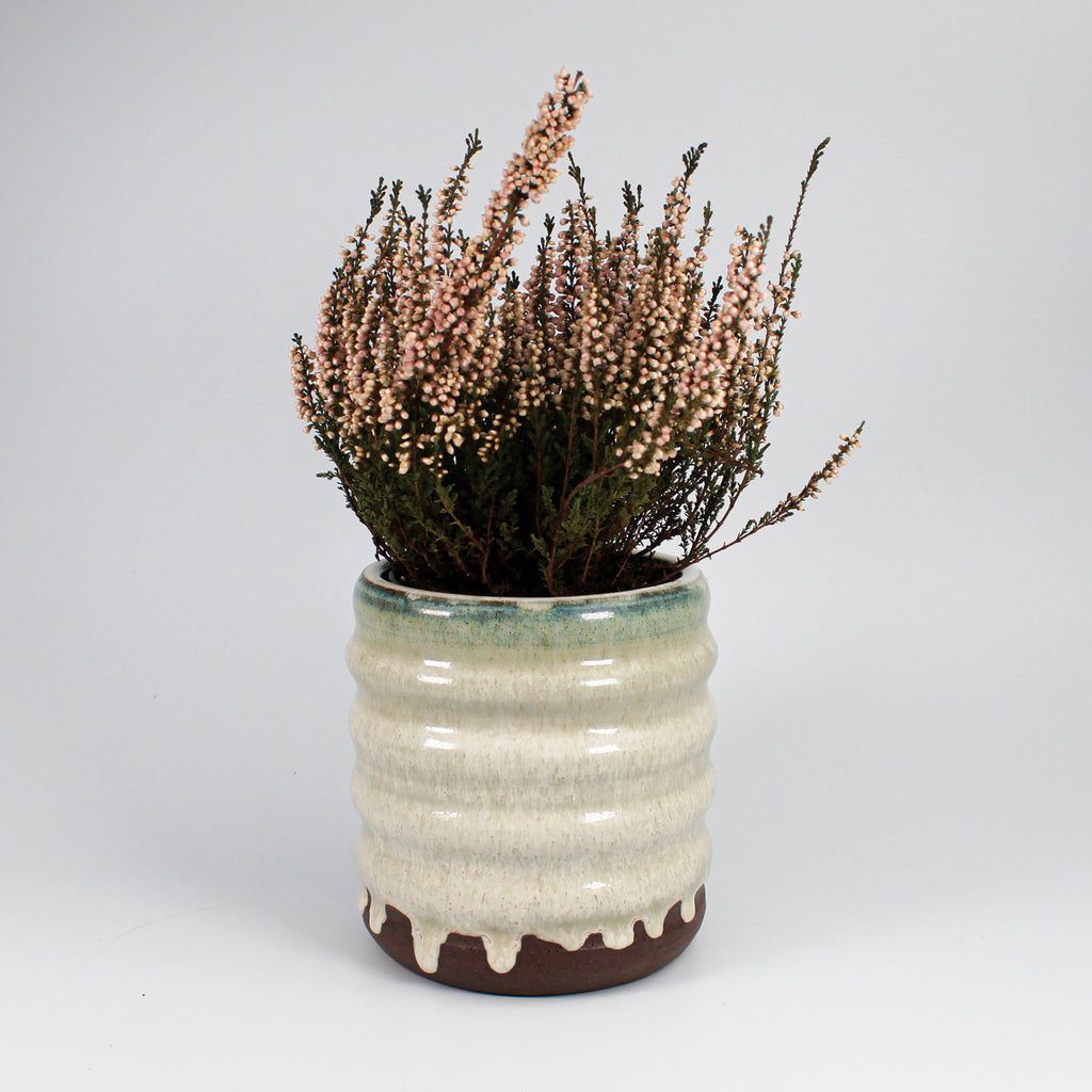 Sage green ceramic plant pot with heather in