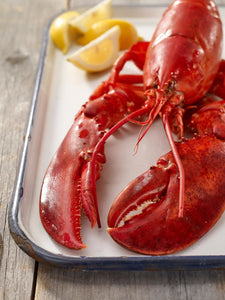 1.2-1.4 LBS FRESH MAINE LOBSTERS