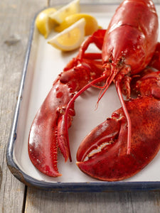 1.1-1.2 LB FRESH MAINE LOBSTERS