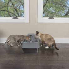 Load image into Gallery viewer, Drinkwell® 1.8 litre Pet Fountain