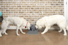 Load image into Gallery viewer, Drinkwell® 7.5 Litre Pet Fountain